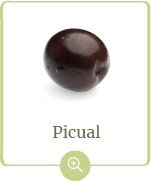 producto-picual